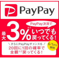 PayPal 20%キャッシュバック